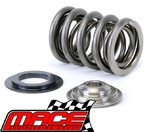 TITANIUM DUAL VALVE SPRING KIT TO SUIT FORD FALCON AU INTECH HP VCT & NON VCT E-GAS LPG 4.0L I6