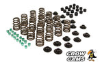 PERFORMANCE VALVE SPRING KIT TO SUIT HSV GRANGE WH WK WL WM WN LS1 LS2 LS3 5.7L 6.0L 6.2L V8